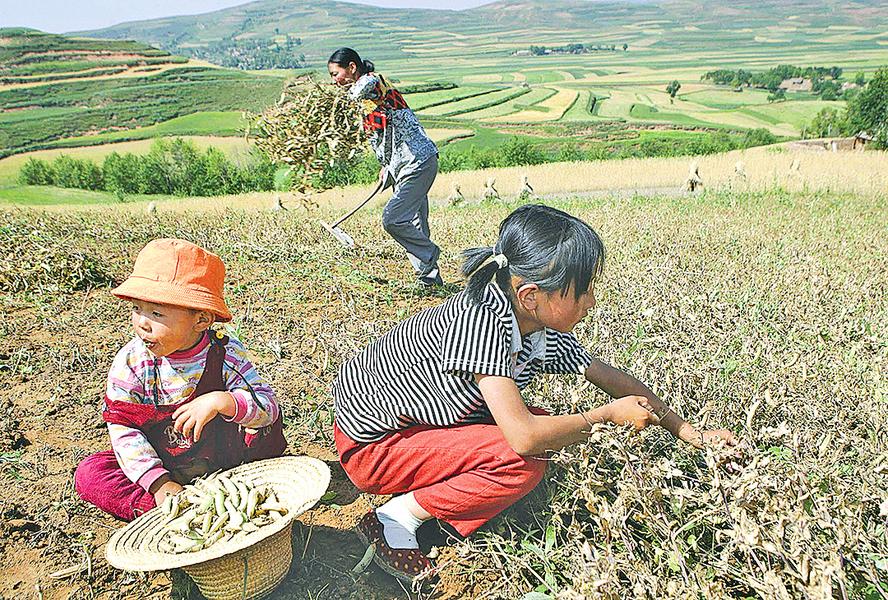 最好的扶貧——土地還給農民
