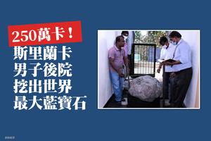 250萬卡!斯里蘭卡男子後院挖出世界最大藍寶石