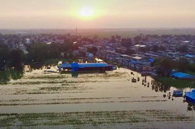 「天下糧倉」河南千萬餘畝農田受災 玉米價格或恐上漲