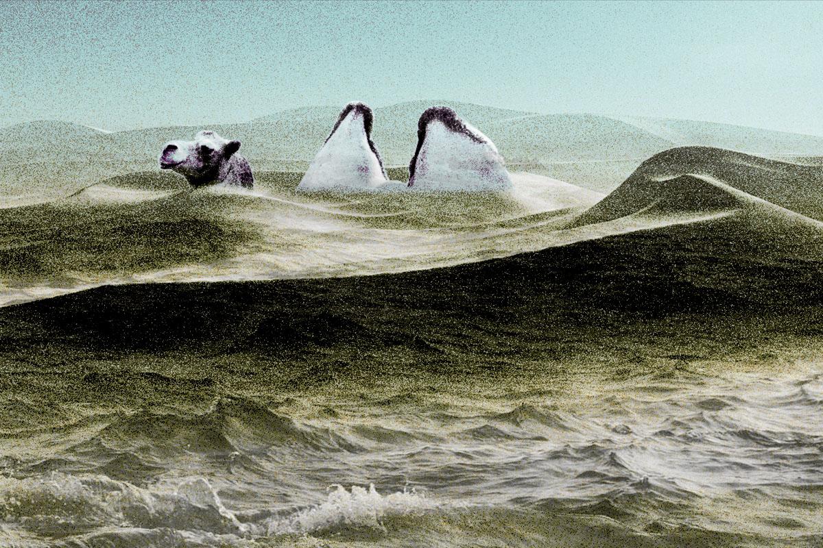 怪哉!塔克拉瑪干沙漠變汪洋,毛烏素沙漠變綠州,真是治理有效嗎?降水帶北移是「雙刃劍」,誰在歡喜誰在憂?(大紀元製圖)