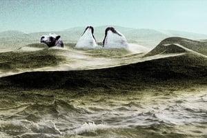 天現異象 塔克拉瑪干沙漠遇洪災