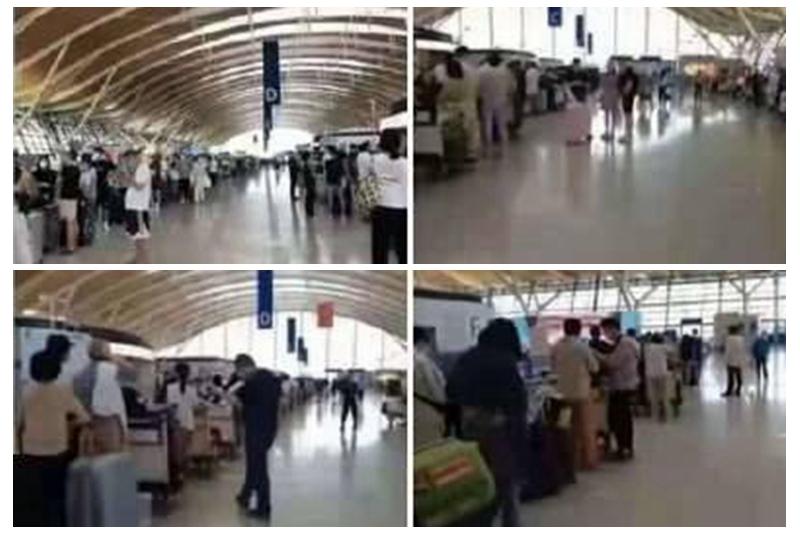 赴美中國留學生排千米長龍 機票炒到十萬惹議