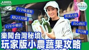 【Amber Running Green】玩家帶你樂闖台灣秘境,小農蔬果、古早味蛋糕、草仔粿、超Q彈魚丸、多汁紅心芭樂、良心無農藥市集,盡在新北雙溪!還有百年中藥老店!