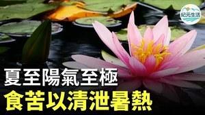 「仲夏之月,木槿榮。」6月21日,我們將迎接黃曆五月中的節氣「夏至」。此時,陽極陰生,陰氣居於內。飲食上,要以清泄暑熱、增進食欲為主。
