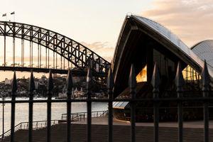 澳洲新南威爾斯省病例連續3天破800 總理籲調整心態迎接解封