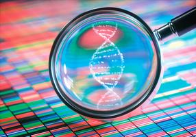 新技術:從毒品膠囊外殼可知疑犯DNA