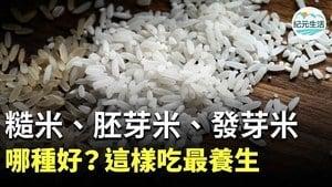 米飯是很健康的主食,能提供人體養分和能量。糙米、胚芽米、發芽米、白米,在加工程度和營養成份上,各有一些差異。
