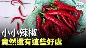 小小辣椒不只是以刺激食慾,讓人胃口大開,它還有許多好處。哪些是小小辣椒帶給健康的好處呢?