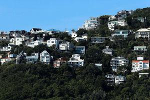 紐西蘭樓價7月年飆逾25% 今月封關需留意風險值變化