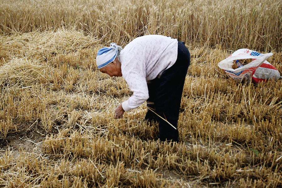 中共擬推農戶承包地退出機制