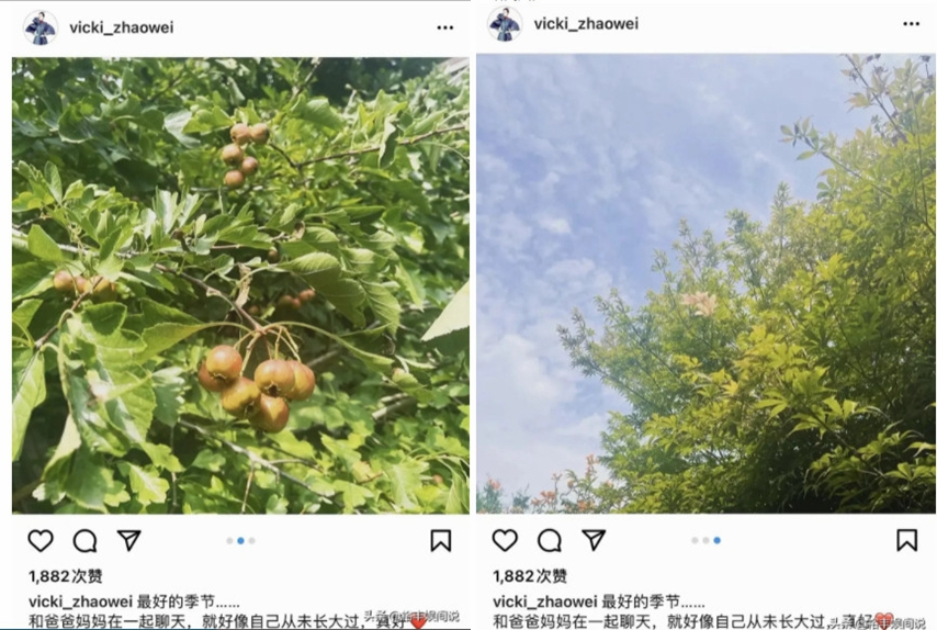 8月29日,趙薇突然在Instagram發照片稱:「和爸爸媽媽在一起聊天」。(Instagram截圖)