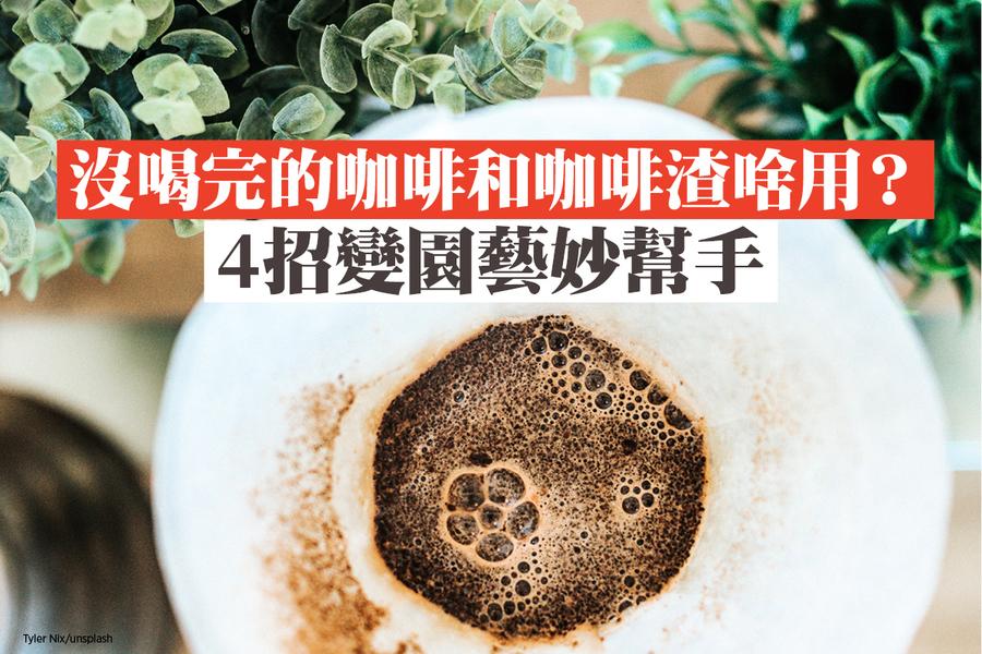 沒喝完的咖啡和咖啡渣啥用?4招變園藝妙幫手