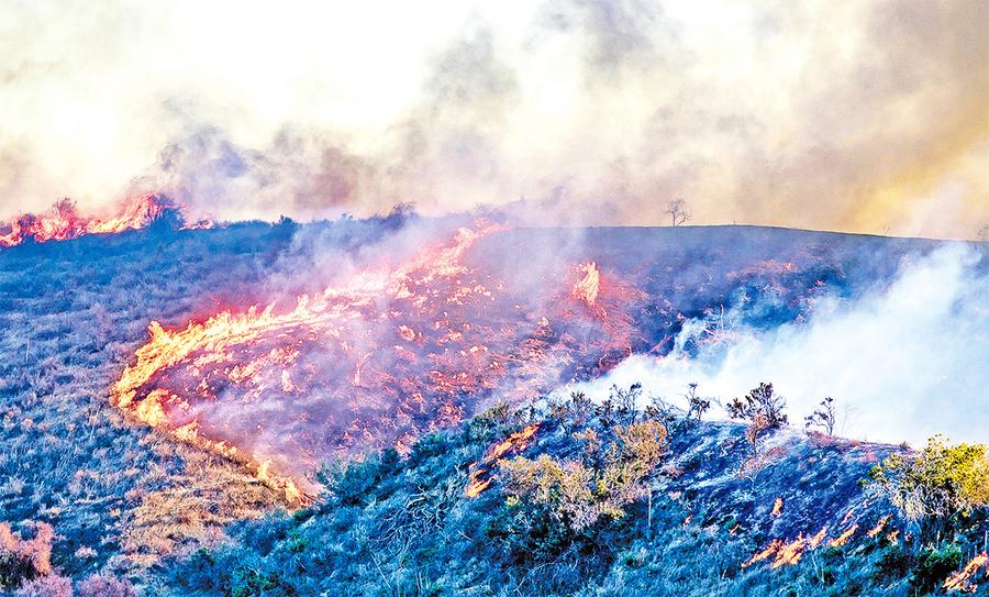 研究:山火煙霧催生毛毛雨 阻礙大降雨