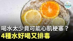 不愛喝水可能造成慢性脫水,嚴重可能造成心肌梗塞。4種冷泡檸檬水,簡單易做又好喝,能幫你輕鬆補充水份,還具有排毒、減肥的效果。