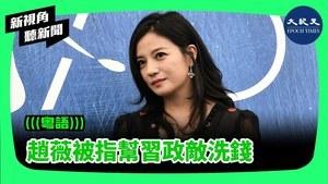【新視角聽新聞】趙薇被指幫習政敵洗錢