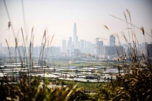 創十年來新低 深圳二手樓八月成交2043套