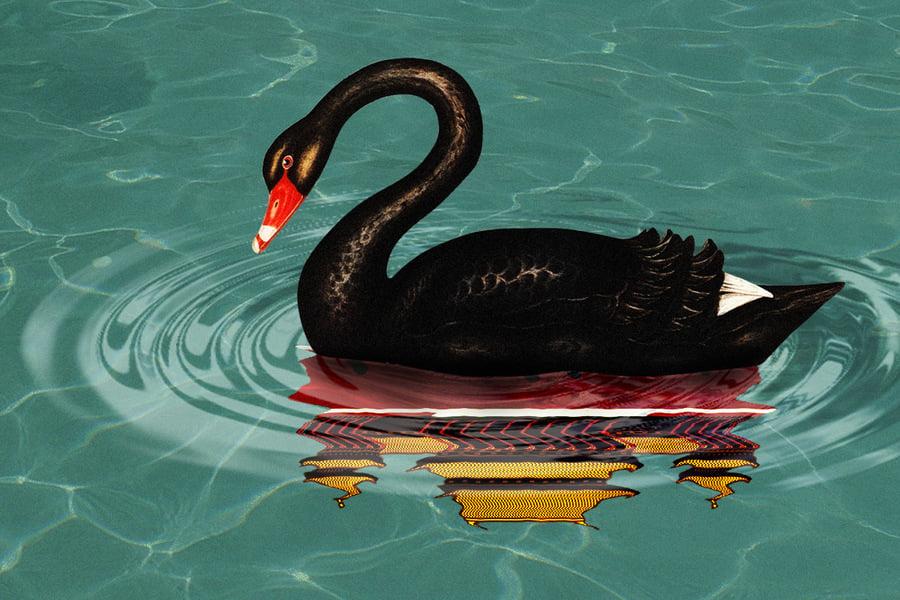 北交所成立 黑天鵝來了