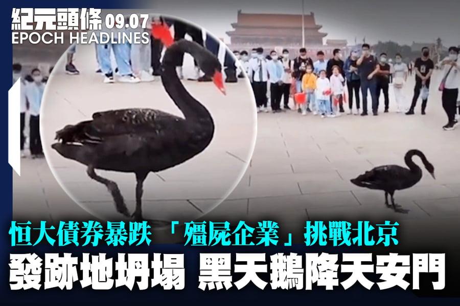 【9.7紀元頭條】發跡地坍塌 黑天鵝降天安門