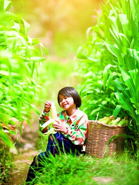 玉米的滋味
