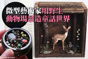 微型藝術家用野生動物場景造童話世界