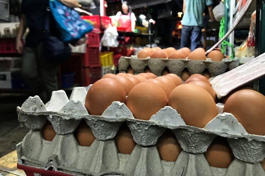 巴基斯坦爆高致病性H5N8禽流感 港府暫停該地禽蛋進口