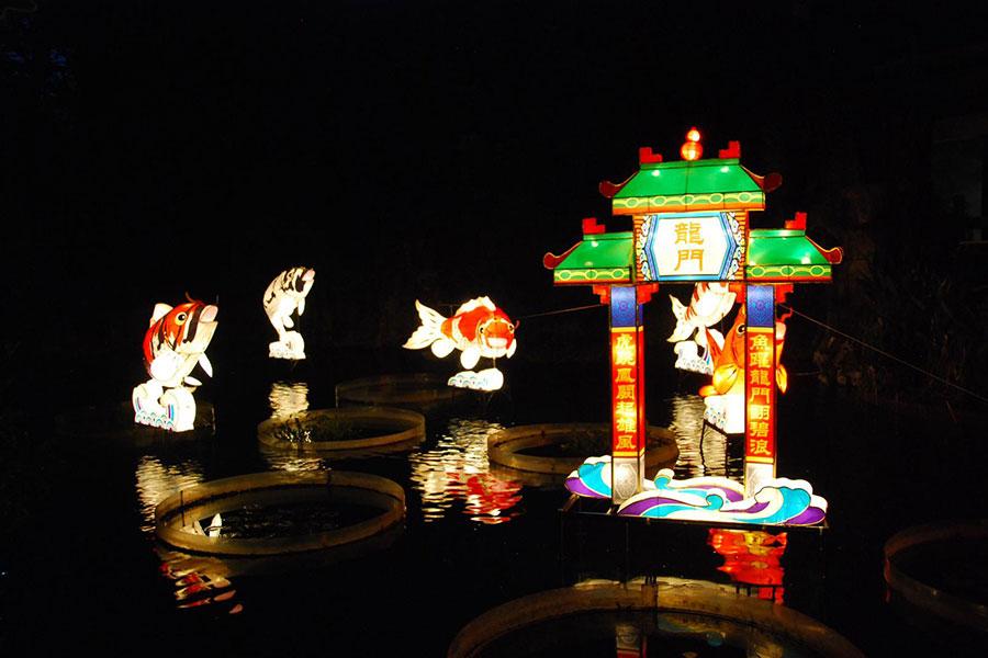 黃大仙祠中秋花燈廟會的大型錦鋰花燈。(News Insight Hong Kong提供)