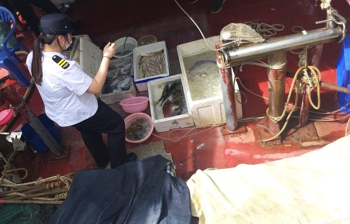 食物環境衞生署今日(14日)與海事處及警方採取聯合行動,打擊在屯門避風塘海旁及青山灣海濱長廊一帶的非法販賣魚類海產活動,以保障食物安全。(政府新聞處)