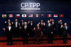 中共申請加入CPTPP 專家:被接受機率低