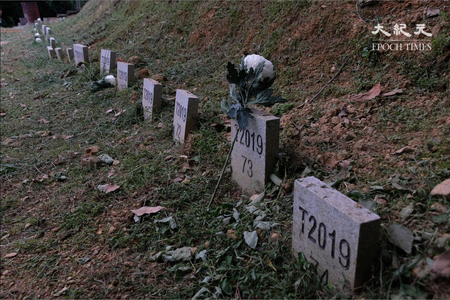 沙嶺公墓只有號碼的無名墓碑。(李遨/大紀元)