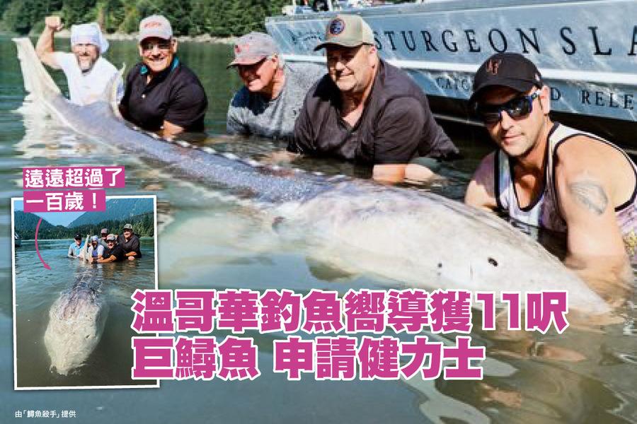 溫哥華釣魚嚮導獲11呎巨鱘魚 申請健力士