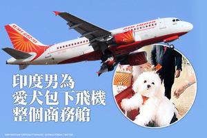 印度男為愛犬包下飛機整個商務艙