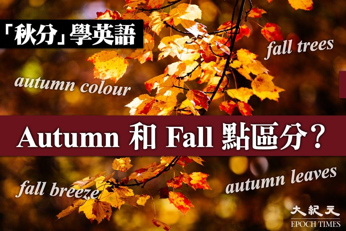 今天(9月23日)是秋分,季節常見英文詞彙中,到底是「Autumn」的開始,還是「Fall」先開始?(大紀元製圖)