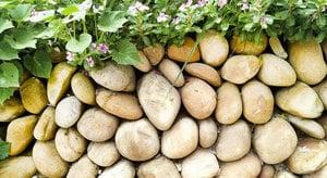 石頭故鄉交響曲─我家的石圍牆