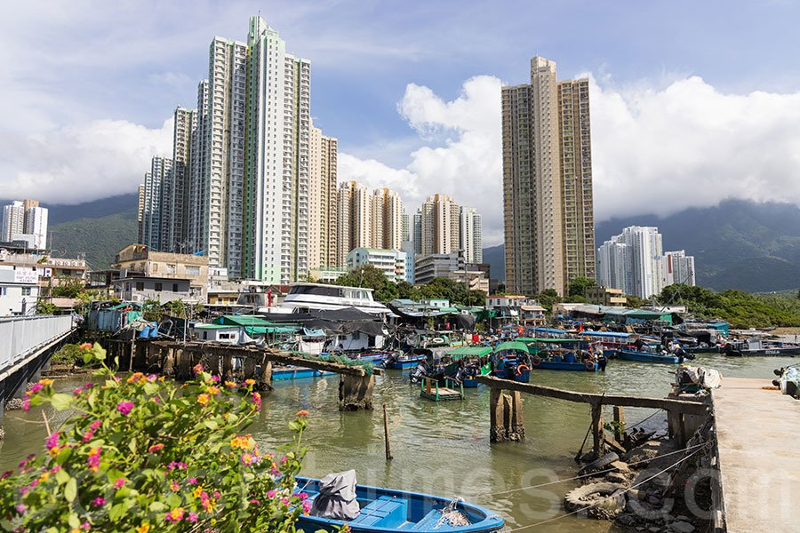 馬灣涌村與逸東邨的高樓大廈形成強烈對比。(陳仲明/大紀元)
