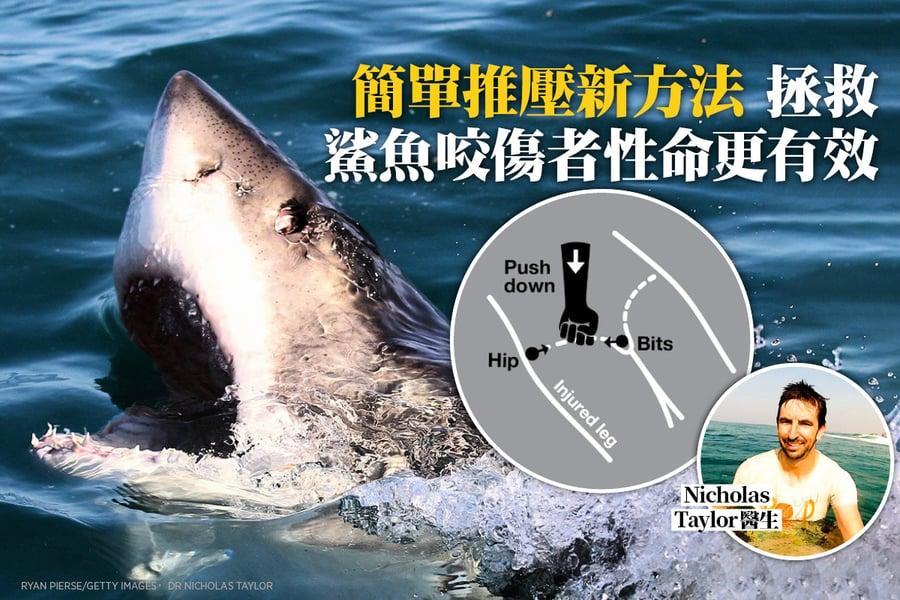 簡單推壓新方法 拯救鯊魚咬傷者性命更有效