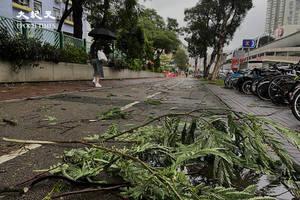 【圖攝】八號風球下街景 水馬吹倒 樹枝滿地