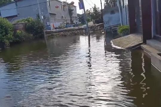 9月中旬,浚縣部分村裏仍有積水。有些村莊房屋泡在水裏的時間長達一個多月。(視頻截圖)