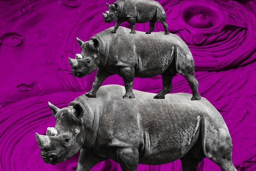 顏純鈎:地產灰犀牛 牽牛容易逐牛難