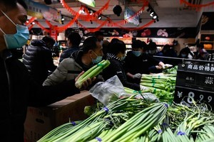 魯蘇交易電價漲近20% 煤電市場化穩物價難成立