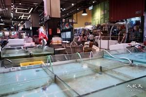 本港爆發侵入性乙型鏈球菌 李彩華呼籲勿用魚檔共用毛巾