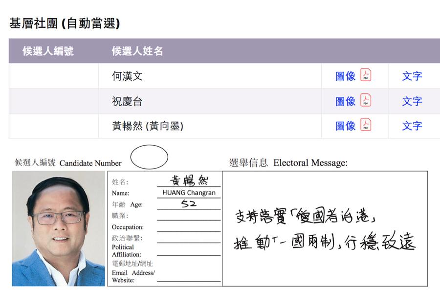 曾被澳洲取消居留權 商人黃向墨被指當選香港選委