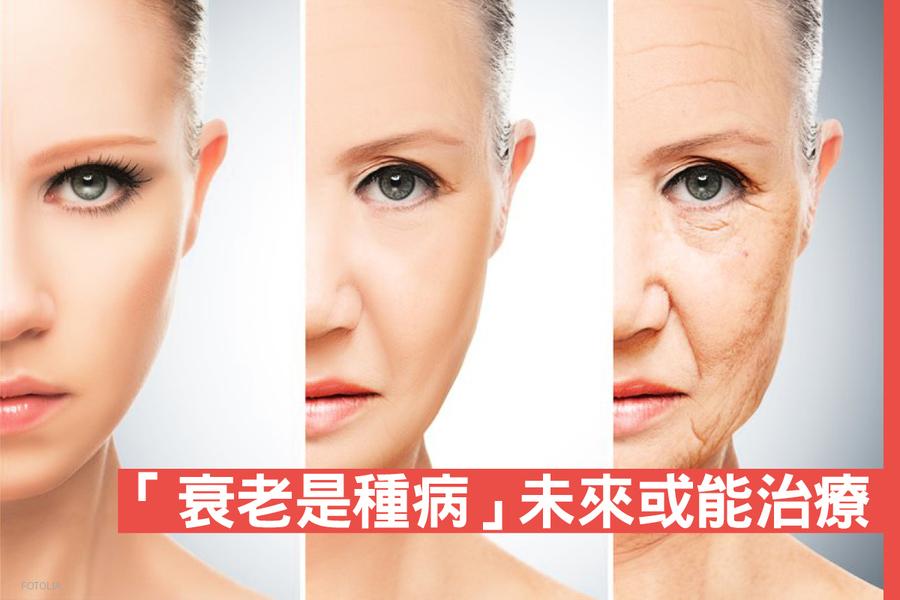 遺傳學家:「衰老是種病」未來或能治療