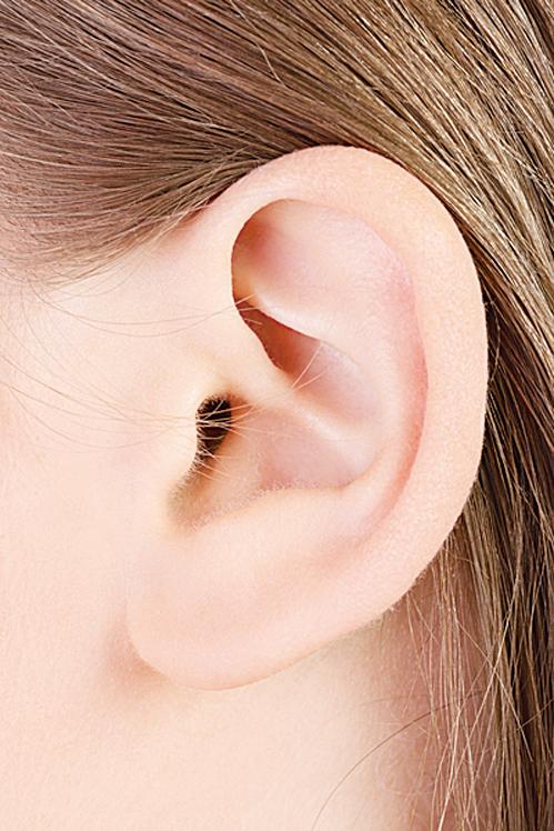 中醫講究「相不獨斷」,從耳朵看壽命除了看耳朵長短外,還有其它特徵。(Fotolia)