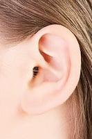 研究證實:從耳朵可看出壽命長短