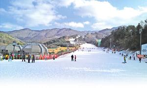 韓國滑雪初體驗