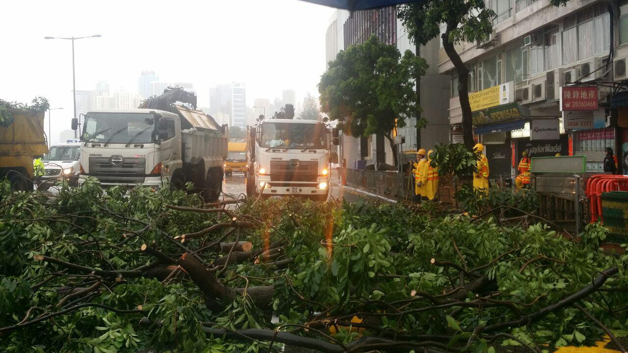 銅鑼灣告士打道先後有兩宗塌樹事故,六條行車線有五條受阻。(余鋼/大紀元)