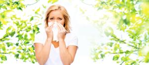 季節交替時期 過敏性鼻炎 小心引發