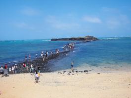 秋遊台灣澎湖 享受風的洗禮