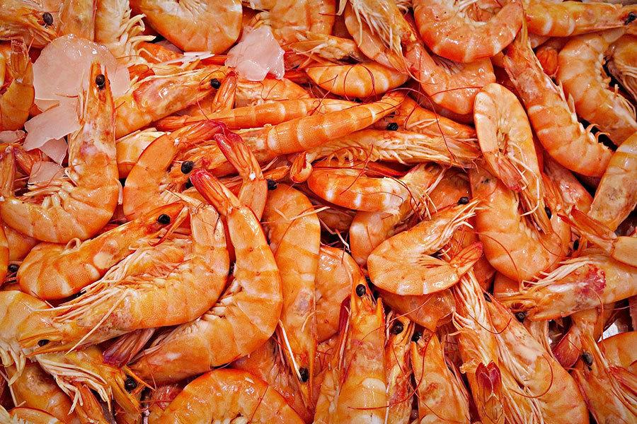 俄宣佈中國進口大蝦不受歡迎