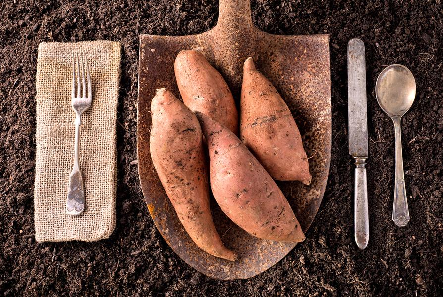 吃番薯 需要注意3個問題